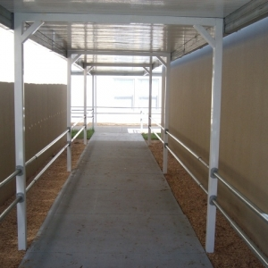 Temporary Walkway Cover